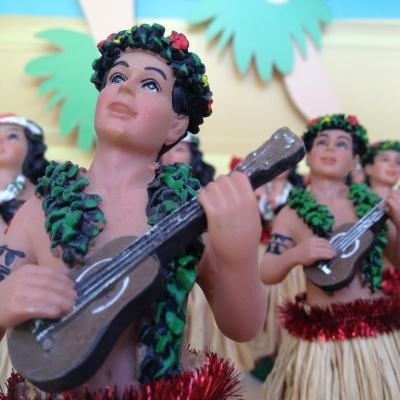 My Hawaii Tips